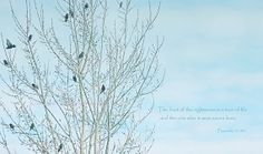 Tree of Life Nature Teal Sky Birds on Tree by KnowGodThroughArt, $30.00