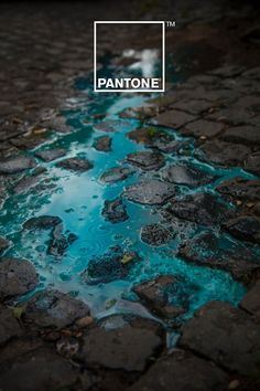 Italian digital artists Matteo Gallinelli and Giuliano Antonio Lo Re recently teamed up for Pantone Rain Edition which features colorful rain puddles infiltrating the streets to pool up on pavements. These are so beautiful.