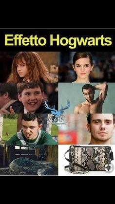 Harry Potter Tumblr, Blaise Harry Potter, Harry Potter Pictures, Harry Potter Jokes, Harry Potter Cast, Harry Potter Theme, Harry Potter Fandom, Harry Potter Universal, Harry Potter Hogwarts