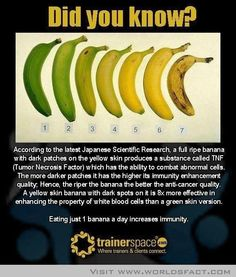 Something You Didn't Know About Bananas-yet another reason to prefer splotchy brown bananas to green ones :]