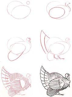 Learn to draw: Turkey