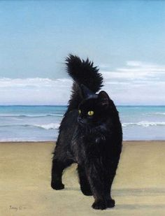 Cat On The Beach by Robert Tracy