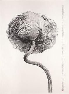 Liu Dan(Chinese, b. 1953)    Poppy, yingsu hua  2007    ink on paper