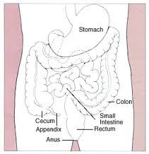 how to drink tocoma colon cleanser