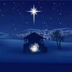 Christmas Beauty !!