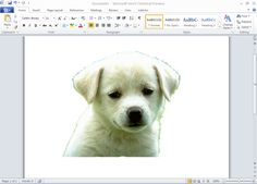 how to remove the background of an image using windows