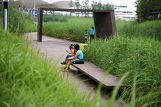 Galería de Parque Houtan en Shanghai / Turenscape - 13