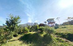 Sebagai salah satu wisata alam di Sleman, ternyata Bukit Klangon Glagaharjo memang menjadi salah satu tempat paling populer di kalangan wisatawan lokal mau Mount Rainier, Maui, Mountains, Nature, Travel, Naturaleza, Viajes, Trips, Nature Illustration