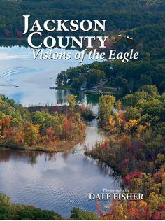 Books about Jackson County Michigan Visions of the Eagle Dale Fisher #ExperienceJxn #JacksonMI #PureMichigan