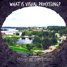 What is Visual Processing?  Not every child with special needs has visual processing deficits but most of the children that we work with do. We have found that with modifications and vision games we can see an improvement, both with their ability to do academics and their confidence level.