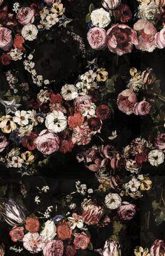 wallpaper Briar Roses by Rebel Walls