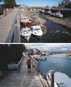 Bay of Fundy has a 50 foot tidal shift from high tide to low tide.