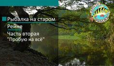 """Рыбалка на старом Рейне Часть вторая """"Пробую на всё"""""""