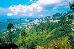 Darjeeling: Enjoy the Richly Flavoured Tea with Picturesque Backdrop. Know about places to visit at www. Travel And Tourism, India Travel, Gangtok, International Holidays, Best Travel Deals, Honeymoon Packages, Darjeeling, Going On Holiday, Tourist Places