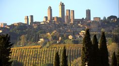 The village of San Gimignano and its towers are seen during the Saffron harvest in this area of the Tuscany region of Italy
