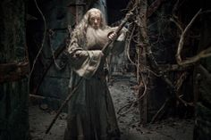 Gandalf in #TheHobbit: The Desolation of Smaug.