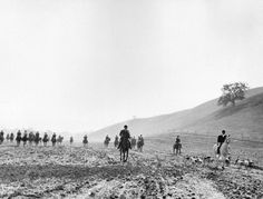 SANTA MONICA MOUNTAINS | HIDDEN HILLS:  Drag hunts usually took place in the early mornings. Photograph shows the master of the hounds and the hounds trailing along.