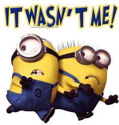 Despicable Me 2 T-Shirt Minions Funny Novelty Men Women T shirt Gift. It Wasn't Me! so funny