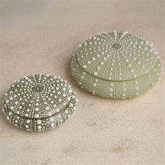 Delicate, and beautiful, these dark green life-like porcelain boxes in the shape of a beach found sea urchin would be a perfect little accent to add to a beach house setting. Hand painted, these dark