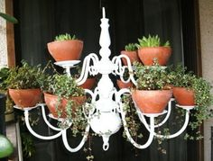 Awesome plant chandelier!