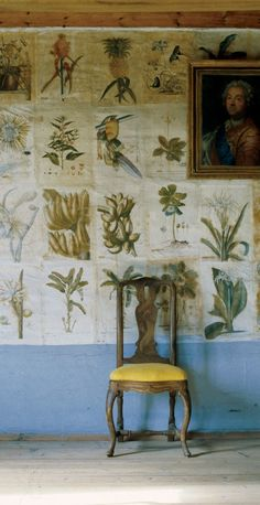 Botanical illustrations (reproductions from the 1700's) on the wallpaper at the…