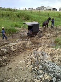 Amish Buggy stuck In Mud ~ Sarah's Country Kitchen ~