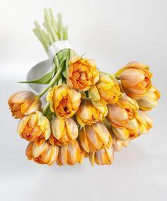 Parrot Tulip Bouquet