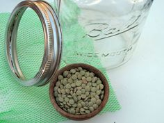 How to Grow Sprouts in a Jar >> http://blog.diynetwork.com/maderemade/how-to/how-to-grow-your-own-sprouts-in-a-jar?soc=pinterest
