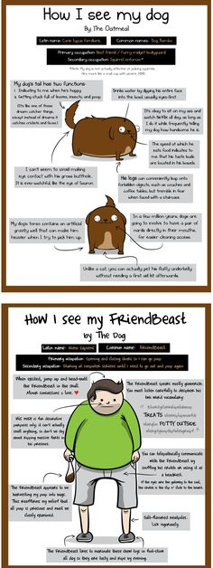 How I See My Dog - How My Dog Sees Me is a funny comic by Matthew Inman of The Oatmeal full