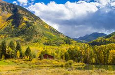 Autumn colours in Colorado by Jim Boud