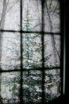 Gennem vinduet...