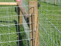 Fox Mountain Farm: Fencing Detail and Design