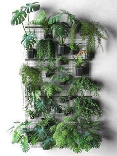 Groene wand met planten.