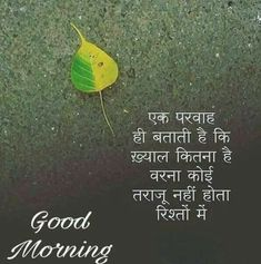 Good Morning Wishes Friends, Morning Images In Hindi, Good Morning Wishes Quotes, Good Morning Nature, Good Morning Image Quotes, Good Morning Beautiful Quotes, Hindi Good Morning Quotes, Morning Quotes For Him, Morning Greetings Quotes