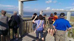 Vizitorë nga Franca dhe Polonia në parkun natyror të Divjakës