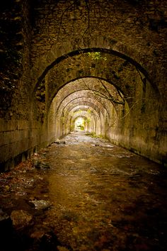 Taken in the abandoned warfare warehouse in Irati Rainforest, Navarra, Spain. The Tunnels by Javier Sales - Photographer