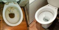 Δείτε ένα έξυπνο, σπιτικό κόλπο για κάτασπρη λεκάνη τουαλέτας! - Fanpage Clean My House, Cleaners Homemade, Holidays And Events, Home Deco, Toilet Paper, Cleaning Hacks, Helpful Hints, Diy And Crafts, Household