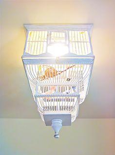 Birdcage chandlier