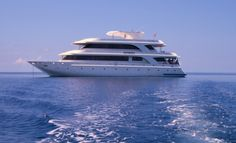 SAVE 20% 7 Atolls (Laamu -Male), Sachika Liveaboard, March 25 - April 01 Only at 1,540 USD pp, 4 spaces left