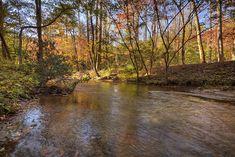 Georgia Cabins - Stepping Stones Creek | Morning Breeze Cabin Rentals
