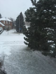 Snow, Outdoor, Beautiful, Outdoors, Outdoor Games, Outdoor Living, Eyes