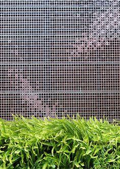 Google Image Result for http://www.noehill.com/sf/landmarks/thepark/de_young_museum_ferns_thumb.jpg