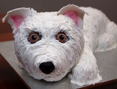 """Shaggy"" Dog Cake"