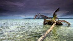 Raja Ampat, West Papua,Indonesia 2012 HD 1/2