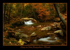 New Hampshire Photo Gallery | Deep in New Hampshire's...: Photo by Photographer Thadd . - photo.net