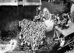 """Art being created. Behind the scenes of """"Metropolis"""", 1925-1926. Rare look into an amazing film."""