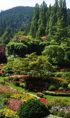 Butchart Gardens - one of the most beautiful gardens in the world