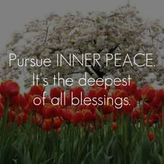 Pursue inner peace. It's the deepest of all blessings.