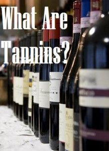 Love wine but aren't sure what all those wine terms mean? Here's the answer to the question: What are tannins?