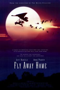 Fly Away Home: Excellent movie. Had our family of 6 engaged all the way through. Starts out a bit sad and scary but not for very long. Great storytelling in a movie.